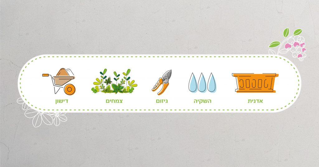 כיצד להכין את גינת העציצים לעונה?